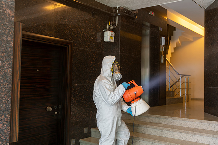 cleaning and disinfection services